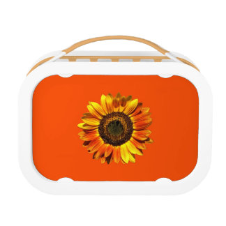 A Super Sunny Sunflower Lunch Box