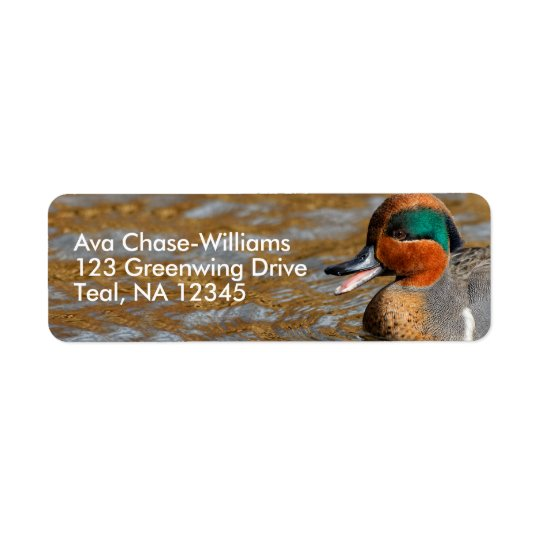 A Talkative Green-Winged Teal Return Address Label
