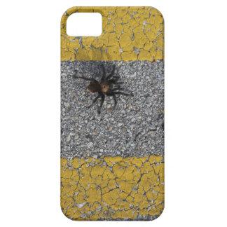 A tarantula crossing the road iPhone 5 covers