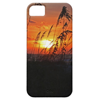 A Tender Sacrifice iPhone 5 Covers