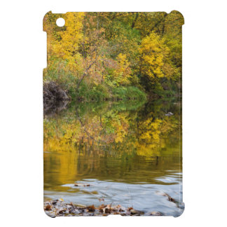 A Time For Reflections Case For The iPad Mini