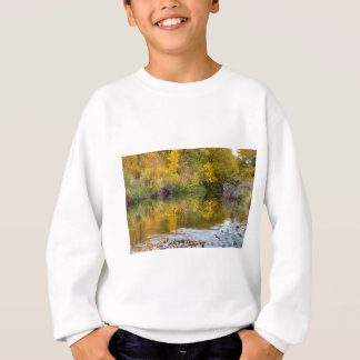A Time For Reflections Sweatshirt
