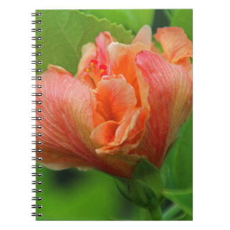 A Time for Trumpets Spiral Note Book