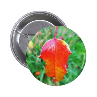A Touch of Autumn 2 Inch Round Button