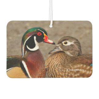 A Touching Moment Between Wood Duck Lovebirds Air Freshener