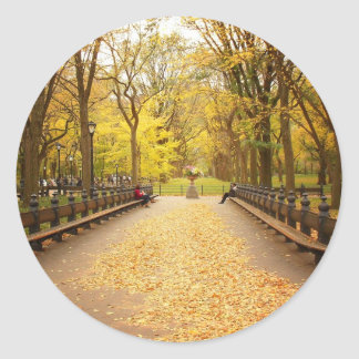 A Trail of Autumn Leaves, Central Park, NYC Round Sticker