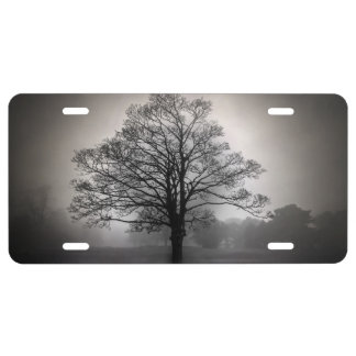 A Tree in the Fog License Plate