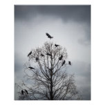 A tree in which many crows have rest poster