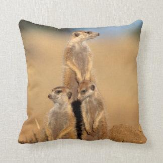 A trio of Suricates sunning at their den Throw Pillow