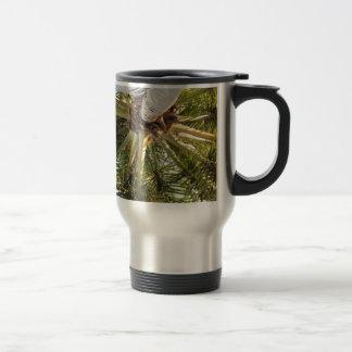 A tropical getaway mugs