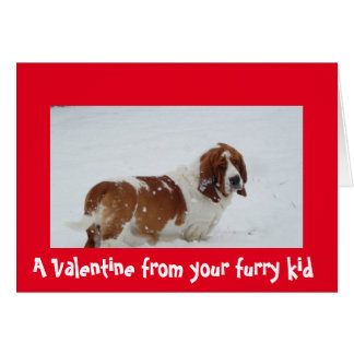 A Valentine from the dog with a Basset Hound Card