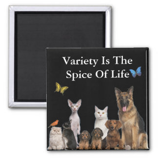A Variety of Pets Magnet