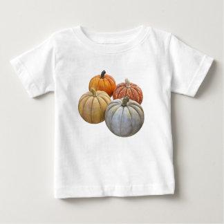 A Variety of Pumpkins Baby T-Shirt