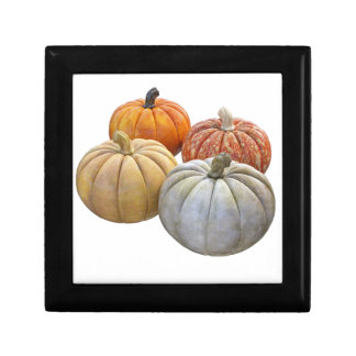 A Variety of Pumpkins Gift Box