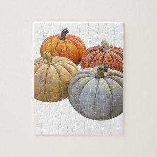 A Variety of Pumpkins Jigsaw Puzzle