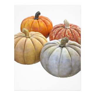 A Variety of Pumpkins Letterhead