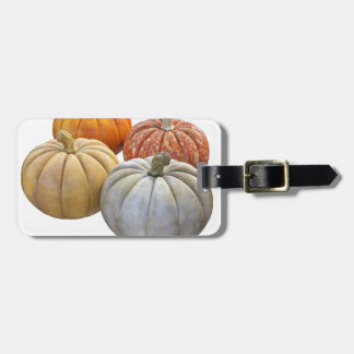 A Variety of Pumpkins Luggage Tag