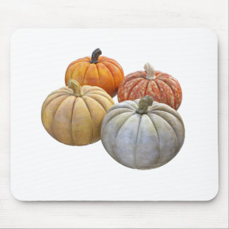A Variety of Pumpkins Mouse Pad