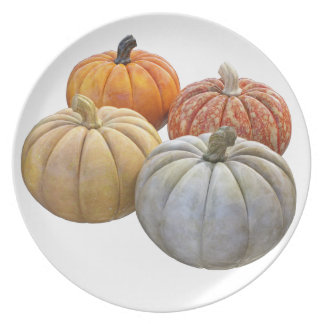 A Variety of Pumpkins Plate