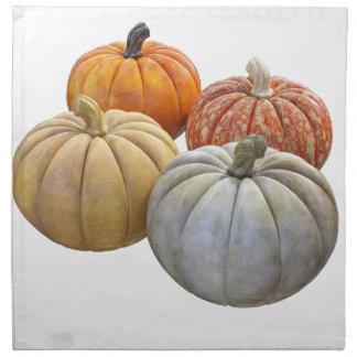 A Variety of Pumpkins Printed Napkins