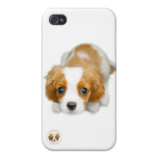 A Very Cavalier White iphone 4/4s Case