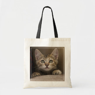 A Very Sweet Tabby Kitten Tote Bag
