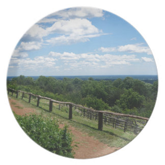 A View From Monticello Plate