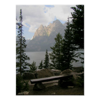 A View with a Bench Poster