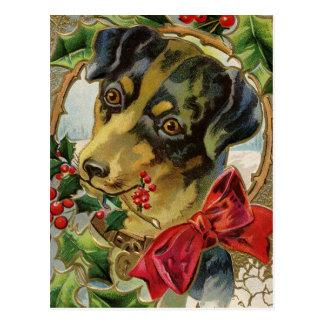 A Vintage Doggy Christmas Greeting Postcard