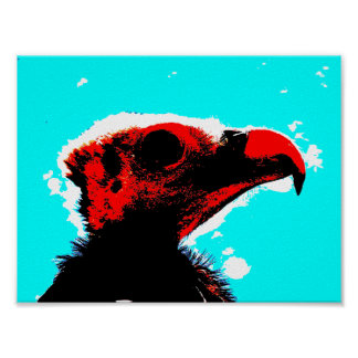 A vulture poster