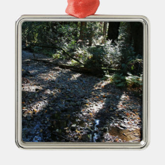 A Walk in Muir Woods Silver-Colored Square Ornament
