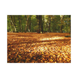 A walk in the park, photo articles canvas print