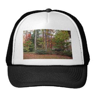 A Walk in the Park Trucker Hat