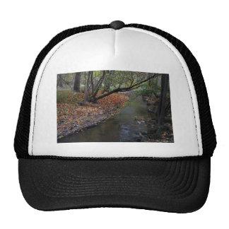 A Walk in Wildwood Trucker Hat