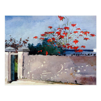 A Wall in Nassau Watercolor by Winslow Homer Postcard