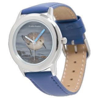 A Wandering Sanderling Watch
