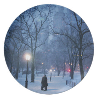 A Warm Kiss On A Cold Night Party Plates