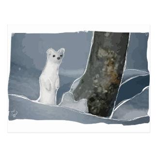 A Weasel -I get it! Postcard