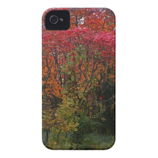 A Whisper in the Wind iPhone 4 Cases
