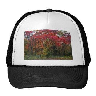 A Whisper in the Wind Trucker Hat