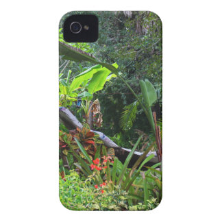 A Whistle from the Whippoorwill Case-Mate iPhone 4 Case