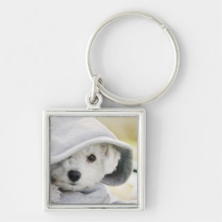 a white dog wearing a hood of shirt Silver-Colored square keychain