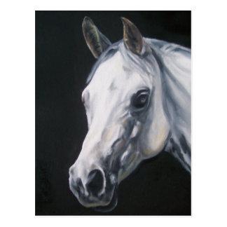 A White Horse Postcard