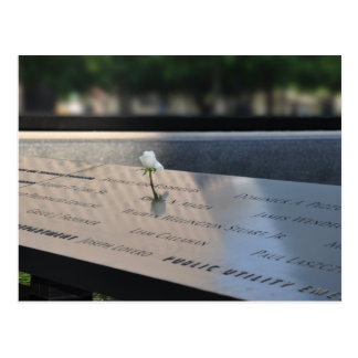 A white rose on Ground Zero Memorial Postcard