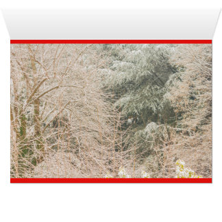 a white winter landscape on greeting card