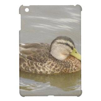 A Wild Duck Swimming iPad Mini Cases