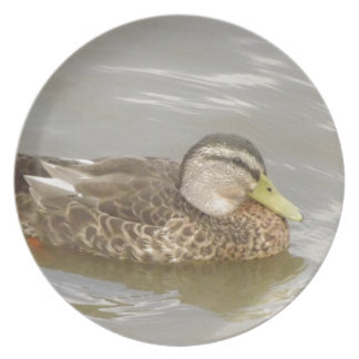 A Wild Duck Swimming Party Plate