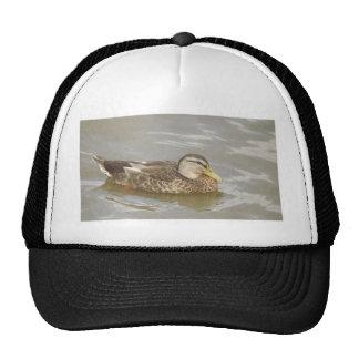 A Wild Duck Swimming Trucker Hat