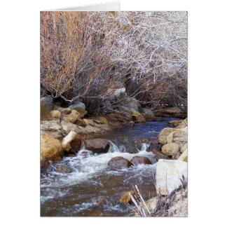 A Winter Creek Card