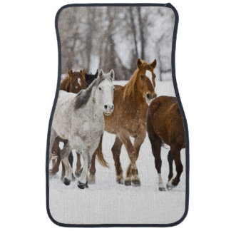 A winter scenic of running horses on The 2 Auto Mat